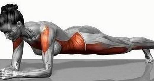 esercizio-plank